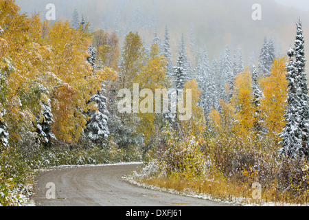 Early snow and autumn colours on the Silver Trail nr Mayo, Yukon Territories, Canada - Stock Photo