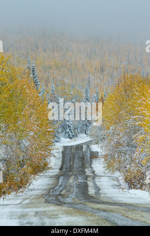Autumn colours and the first snowfall on the road to Keno, Silver Trail, Yukon Territories, Canada - Stock Photo