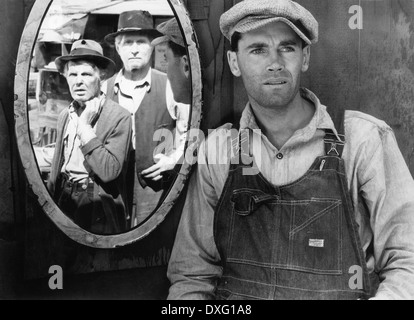 Grapes of wrath - Stock Photo