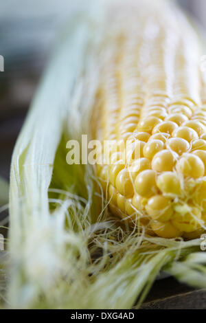 Close Up Of Fresh Sweetcorn On Cob - Stock Photo