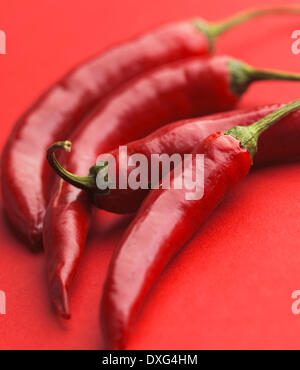 Red Chilli Peppers On Red Background - Stock Photo