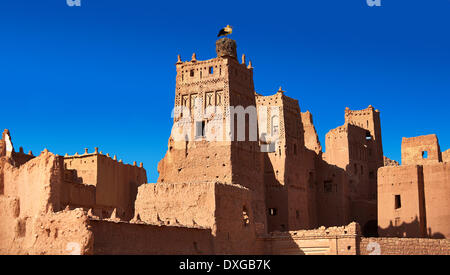 Stork nesting on the Glaoui Kasbah, Tamdaght, Morroco - Stock Photo