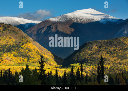 autumn colours along the South Klondike Highway and a shadow resembling the head of a wolf on Young Peak British - Stock Photo