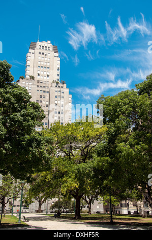 Trees in Plaza San Martin in Buenos Aires - Stock Photo