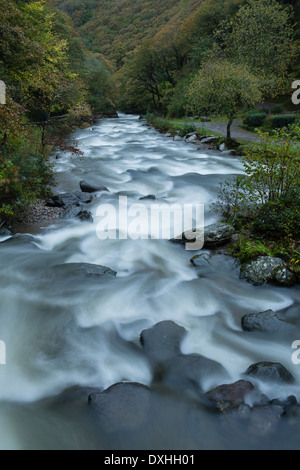 Watersmeet, where the valleys of the East Lyn and Hoar Oak Water merge, Exmoor National Park, Devon, England, UK - Stock Photo