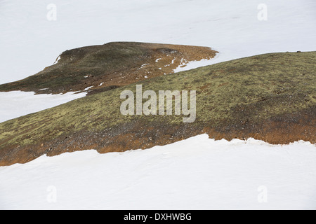 Moss covered bare ground being revealed by retreating snow and ice on Joinville Island just off the Antarctic Peninsular. - Stock Photo