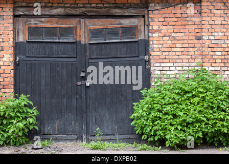 Old abandoned wooden garage doors overgrown with plants - Stock Photo