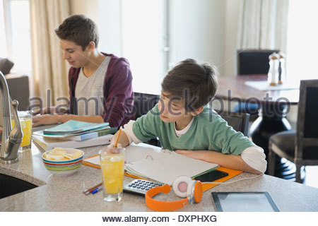 Brothers studying at home - Stock Photo