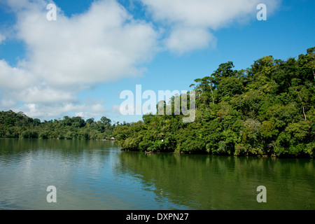 Guatemala, Department of Izabal, near the town of Livingston, Rio Dulce (Sweet Water) River. Jungle river view. - Stock Photo