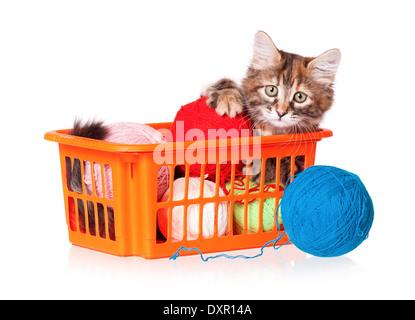 Kitten with balls of threads - Stock Photo