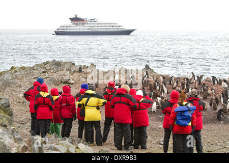 Cruise ship Antarctica expedition with tourists view Antarctic landscape, penguin, penguins, Antarctic Peninsula. - Stock Photo