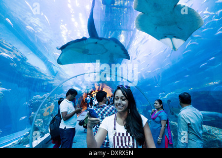 People in the tunnel at Dubai aquarium and underwater zoo, Dubai Mall, Dubai UAE, United Arab Emirates - Stock Photo