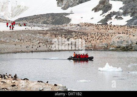 Antarctica tourism among the landscape of Antarctic iceberg, glacier, ice, and penguin with tourists in zodiacs.