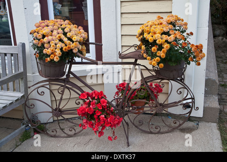 View of flower display on old bicycle, Lunenberg, Canada. - Stock Photo