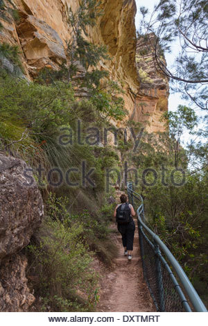 Female bush walker on the famous National Pass walking trail in the Blue Mountains - Stock Photo