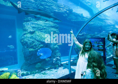 Children looking at a shark, the Dubai Mall Aquarium and underwater Zoo, Dubai, UAE, United Arab Emirates - Stock Photo