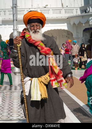 India, Punjab, Amritsar, Sri Harmandir or Darbar Sahib, Golden Temple Gurdwara, old pilgrim - Stock Photo