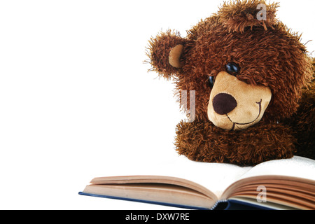 stuffed bear reading a book isolated on white - Stock Photo