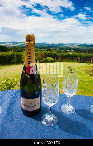 A champagne bottle and two glasses on a table looking out on Shropshire countryside. - Stock Photo
