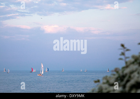 Sailboats on Lake Ontario on a summer afternoon in Oakville, Ontario, Canada. The small black specs in the sky are - Stock Photo