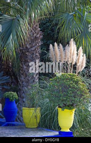 Blue And Yellow Pots In Majorelle Gardens, Marrakech, Morocco   Stock Photo