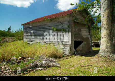 An abandoned shack or garage in the sunshine with overgrown field. - Stock Photo
