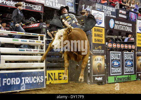 Fresno, CS, USA. 29th Mar, 2014. March 29, 2014 Fresno, CA - Professional Bull Rider Guilherme Marchi in the Built - Stock Photo