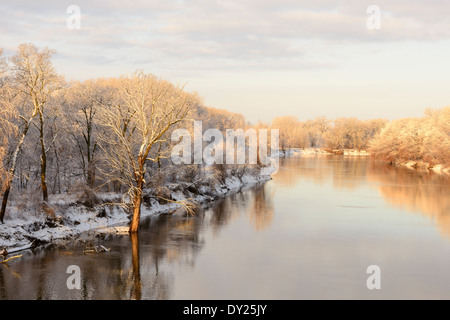 Spring snow covers trees along the Minnesota River in Bloomington. - Stock Photo