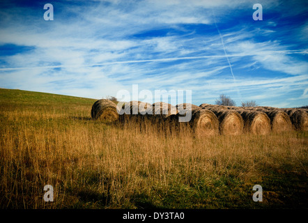 Hay bales are lined up in a row in an open field beneath a sky filled with clouds and contrails. - Stock Photo