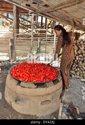 Cambodian woman cooks chili peppers in an open fired cauldron in the preparation of chili peppers a cottage industry - Stock Photo