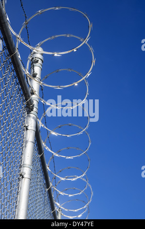 razor wire topped metal mesh fence with blue sky - Stock Photo