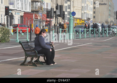 Obese woman sitting on a bench on the seafront at Brighton, UK - Stock Photo