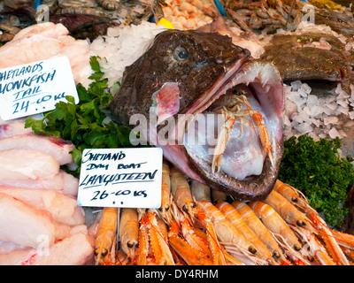 Borough Market fish stall selling Scottish Shetland Monkfish Tail and Langoustine on ice in Southwark London, UK - Stock Photo