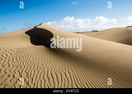 Dunes of Maspalomas, Gran Canaria, Canary Islands - Stock Photo