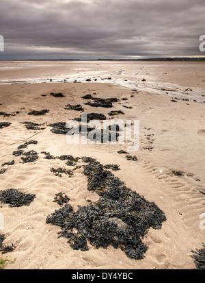Holy Island Sands on Holy Island Lindisfarne, England - Stock Photo