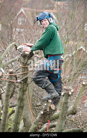 Portrait of tree surgeon in tree top - Stock Photo