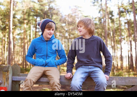 Twin brothers sitting on gate in forest - Stock Photo