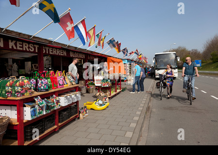 Selling and buying flower bulbs in Lisse - Stock Photo