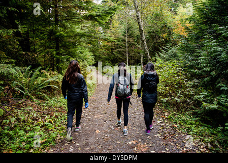 Three young female hikers walking through wood, Squamish, British Columbia, Canada - Stock Photo