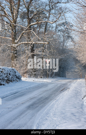 Snow covered wooded country lane which has been compacted and turned to ice. Melton Mowbray, Leicestershire, England - Stock Photo
