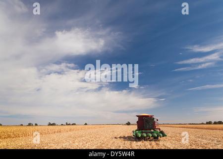 USA, Nebraska, North Platte, wheat field and combine - Stock Photo