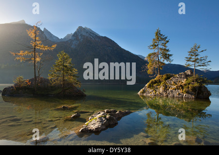 Spruces on a rock island at lake Hintersee, view of Hochkalter, Ramsau, Berchtesgaden region, Berchtesgaden National - Stock Photo