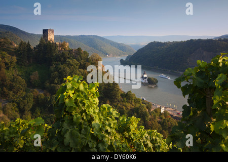 View from the vineyards to Gutenfels castle and Pfalzgrafenstein castle, Unesco World Cultural Heritage, near Kaub, - Stock Photo