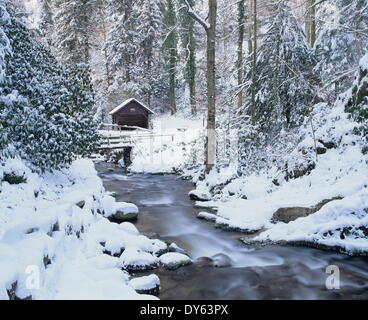 Cottage in a forest in winter, near Geroldsau Waterfall, Black Forest, Baden Wurttemberg, Germany, Europe - Stock Photo
