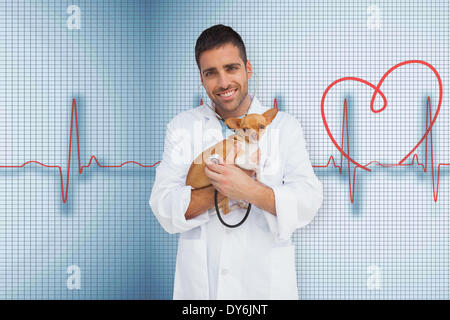 Composite image of vet holding chihuahua - Stock Photo