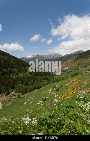 Summertime in the country of Andorra la Vella and a road with wildflowers leading to a small group of apartments - Stock Photo