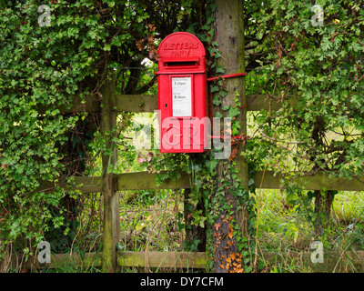 Letterbox in a hedge on an old fence in rural Surrey. Early lamp box style from the reign of George V. - Stock Photo