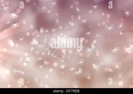 Digitally generated dandelion seeds on pink background - Stock Photo