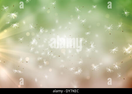 Digitally generated dandelion seeds on green background - Stock Photo