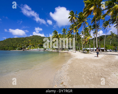 Caribbean, Saint Lucia, Marigot Bay, - Stock Photo